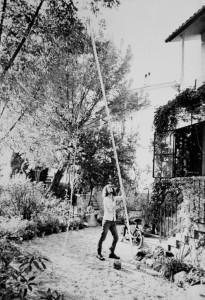 Enrico gleria alza il palo da scalata: poteva arrivare fino a 6m di altezza