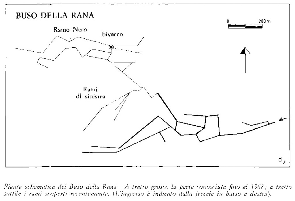 lo schema dei rami esplorati durante gli anni dal 1968 al 1975
