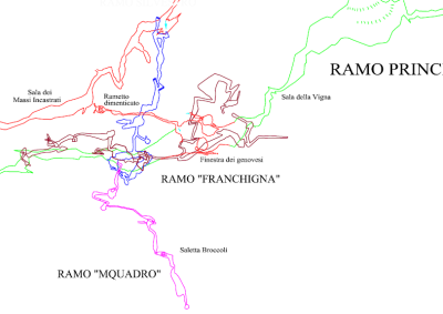 frankigna-mquadro
