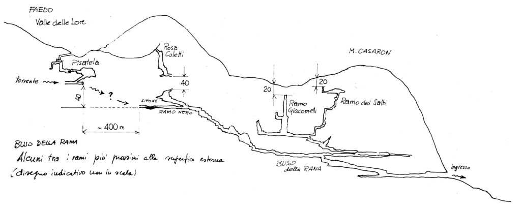Sezione dell'Altopiano Faedo-Casaròn con le principali diramazioni prossime alla superficie (disegno di Federico Lanaro) 1993